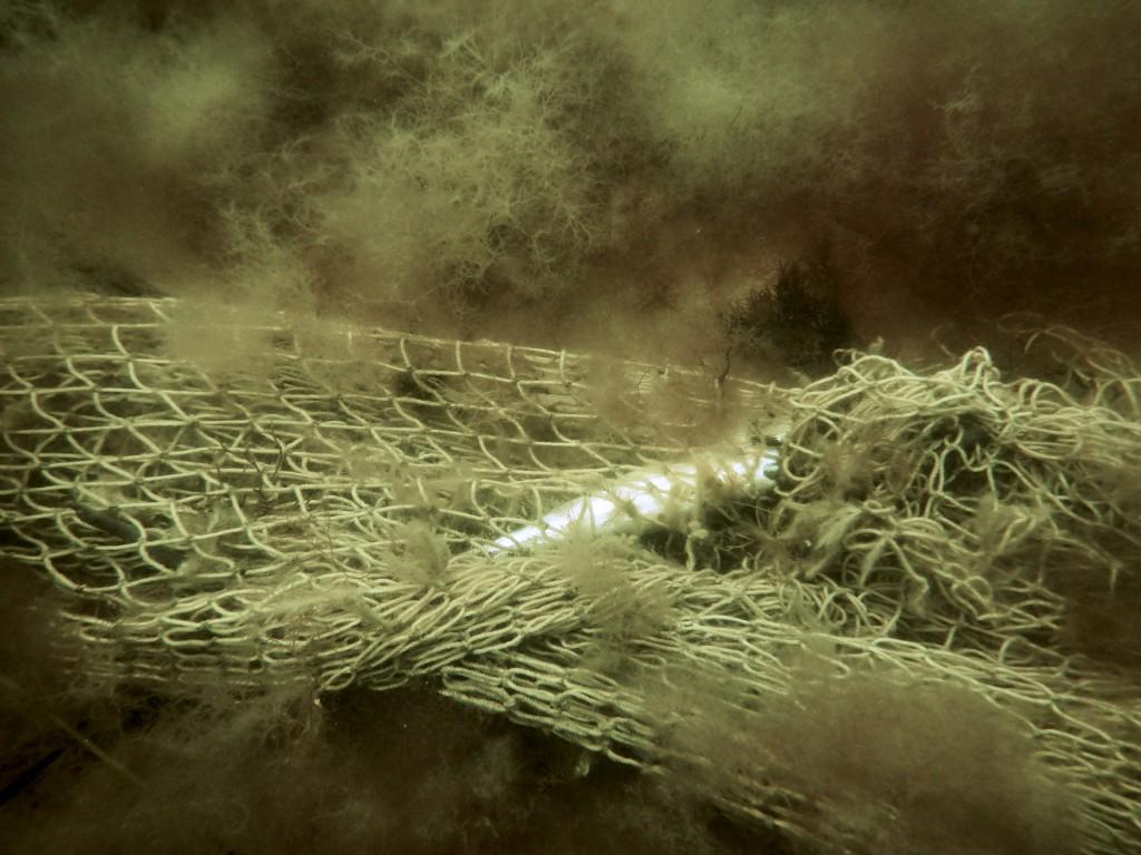 Sarkofagskeppetifrån1700talet3
